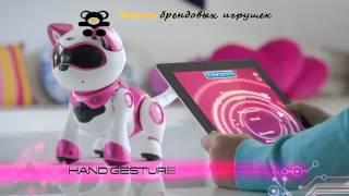GRAND TOYS 36901 Кошка интерактивная TEKSTA-KITTY в коробке от магазина ДЕТКИ