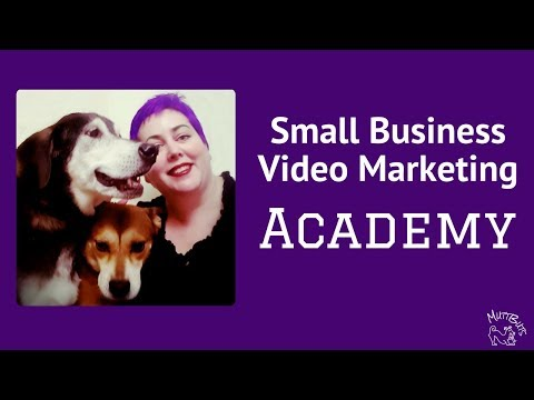 Small Business Video Marketing Academy