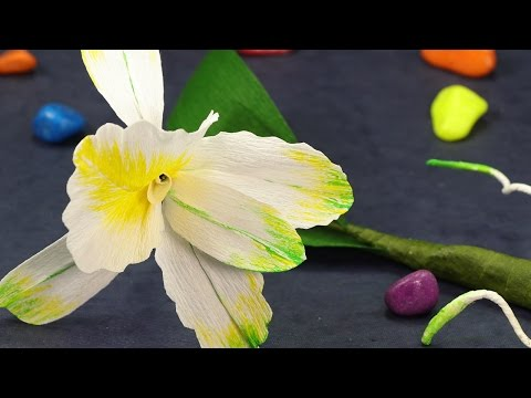 DIY Crepe Paper Flowers Craft - How to Make Cattleya Orchids Flowers with Paper