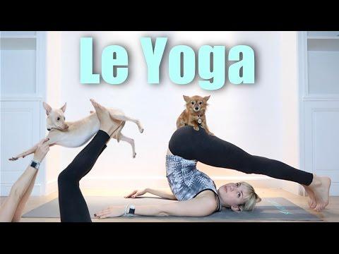 Yoga - Natoo