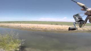 Fishing in the Imperial Valley