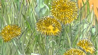 谷山浩子さんの「きみはたんぽぽ」に絵をつけてみました。