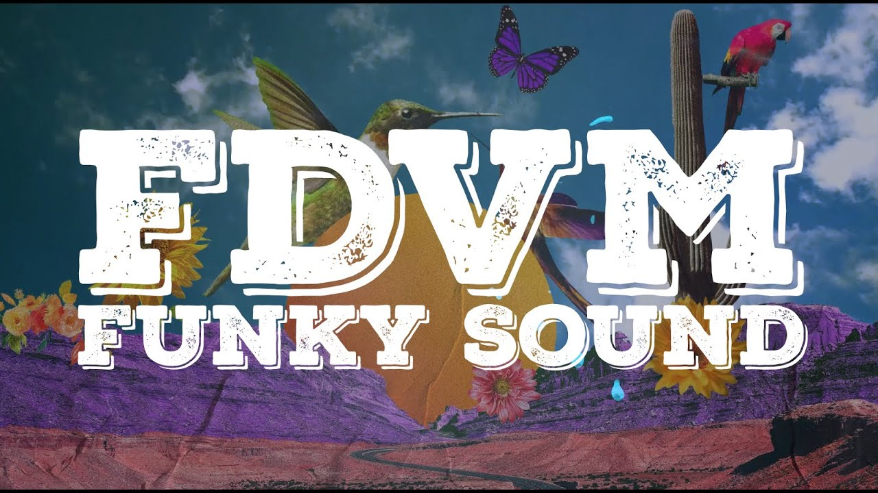 FDVM & Solar State - Funky Sound [Official Lyric Video]