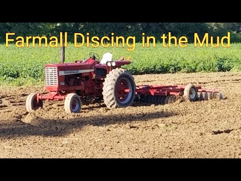 Farmall Discing In The Mud