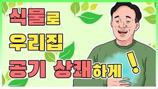 공기정화식물로 새집 증후군 예방