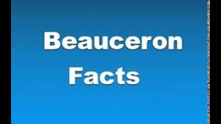Beauceron Facts - Facts About Beaucerons