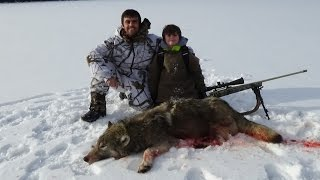 Western Montana Wolf Hunting 1