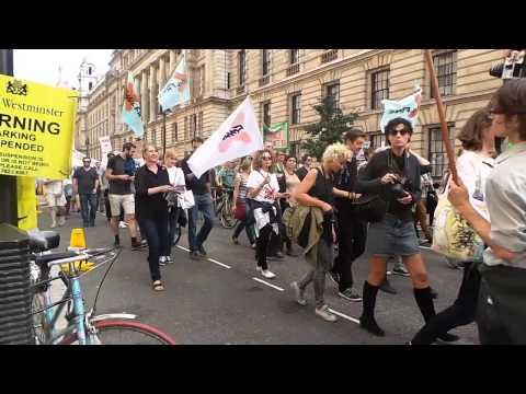 London Protest For Green Energy - Timelapse