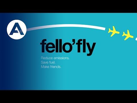 How a fello'fly flight works?