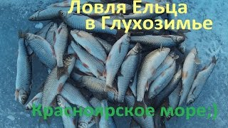 Зимняя Рыбалка, Ловля Ельца, КВХ.