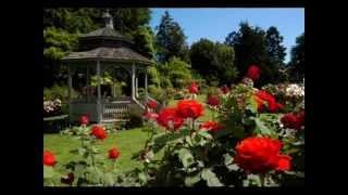 Elvis Presley - In The Garden  [ CC ]