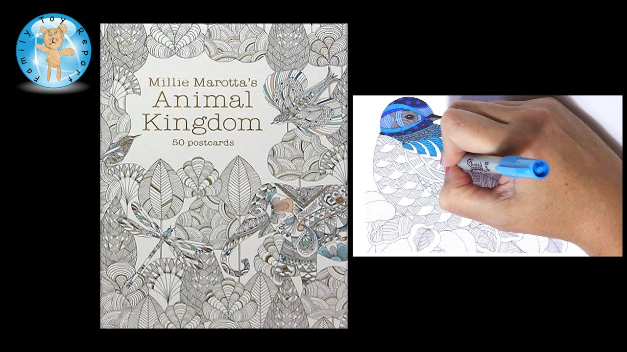 Millie Marottas Animal Kingdom 50 Postcards Adult Coloring Book Bird