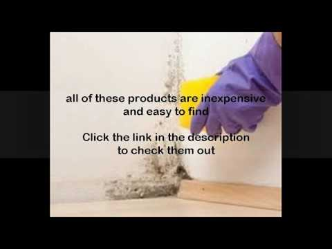 bleach solution to kill mold youtube. Black Bedroom Furniture Sets. Home Design Ideas