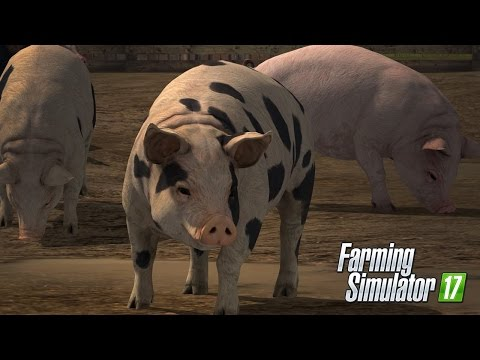 Animal New INFO: PIGS, COWS, SHEEP AND CHICKENS!! MUST WATCH!!!--Farming Simulator 17 (2017)