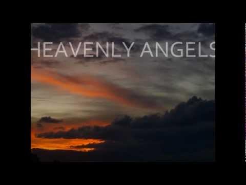 Heavenly Angels - Paul Goodyear (Anaconda Remix) Promo Video
