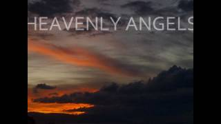 Heavenly Angels - Paul Goodyear (Anaconda Remix) Promo Video