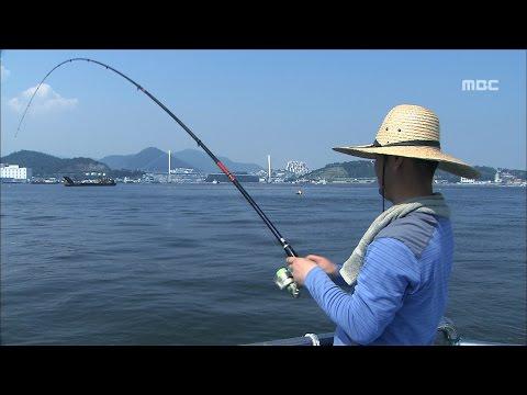 [특집다큐] '섬' 5부 - 어부의 바다 #2 (적금도, 경도, 해상펜션, 갯장어잡이, 하모)