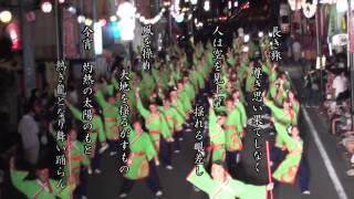 高知よさこい祭り、安芸納涼祭出場チーム、祭屋-Saiya-よさこい踊り子隊...