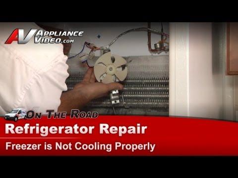 WG03F05834 : GE Refrigerator Evaporator Fan Motor on