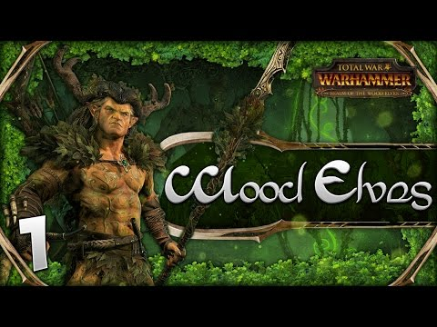 THE KING OF THE WOODS! Total War: Warhammer - Wood Elves Campaign #1