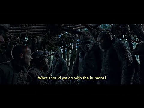 war-for-the-planet-of-the-apes-:i-did-not-start-this-war