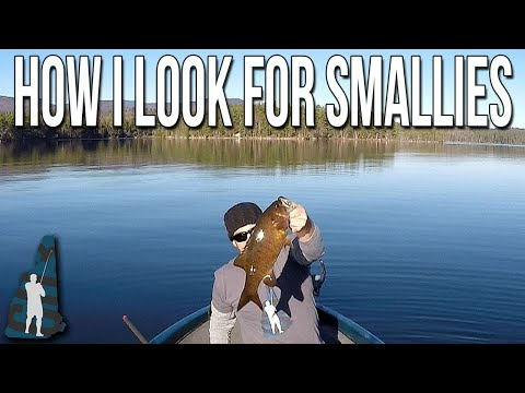 Where, Why And How To Look For Smallmouth Bass