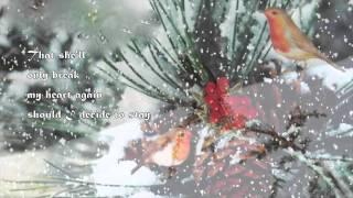 """""""Snowbird"""" - ( Elvis Presley )"""