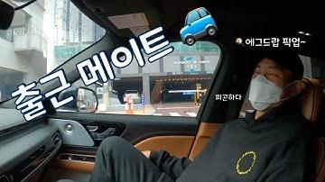[일상 VLOG]출근하고 자동차 극장! 🚙🎞