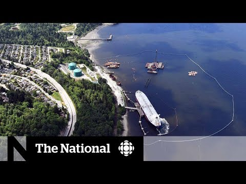 CBC News: The National: Trans Mountain opponents vow to dig in following NEB approval