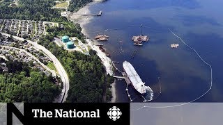 Trans Mountain opponents vow to dig in following NEB approval