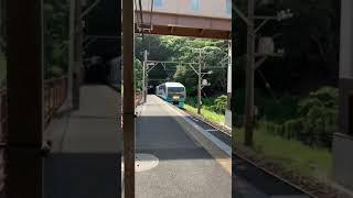 スーパービュー踊り子 251系(RE–1編成)
