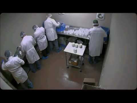 Food Grade Production at Essential Depot