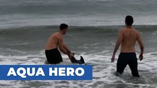 Guy Rescues Beached Baby Dolphin