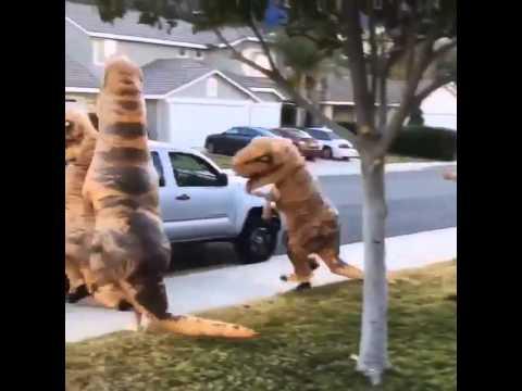 Порно с динозавром смотреть видео прикол - 1:37