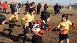 XV Rugby Murcia Sub 8