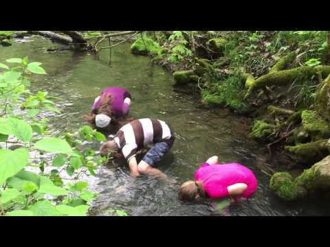 Who Can Hold Their Head Under Cold Creek Water The Longest - #2