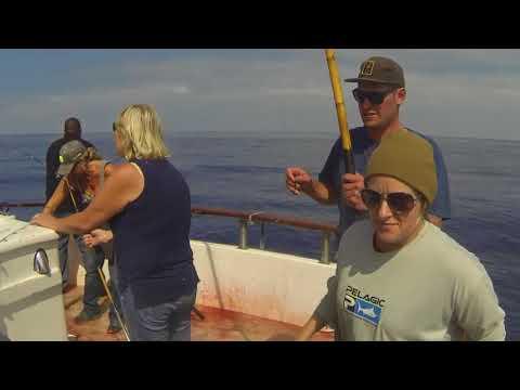 PACIFIC QUEEN FISHING TRIP