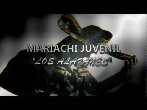 Mariachi Los Alazanes ( Los Reyes Acozac) Calidad HD .wmv