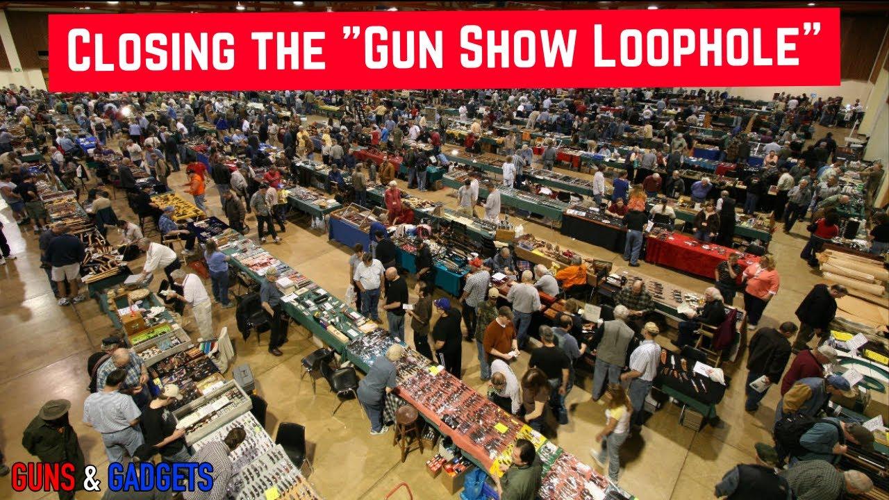 HR167: Closing The Gun Show Loophole