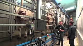 Les éleveurs ont testé #19 : l'audit de traite LACTOCORDER