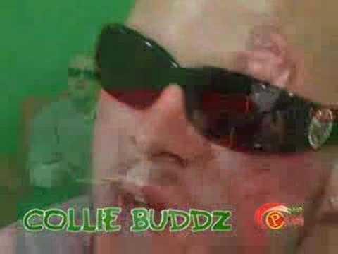 Collie Buddz - Mamacita Live  Riddim Up PLUSH TV