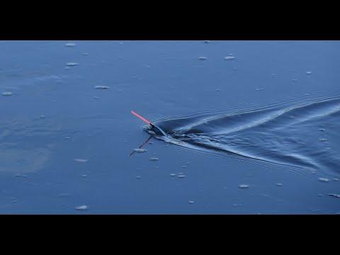 Как ловить на течении  Поплавок Cralusso Surf