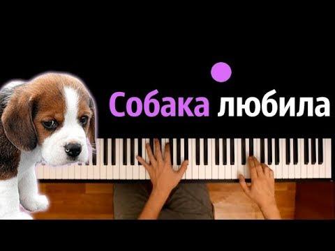 Собака любила ● караоке | PIANO_KARAOKE ● ᴴᴰ + НОТЫ & MIDI