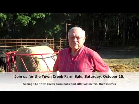 Town Creek Farm Customer Testimony Bill Wells 2016