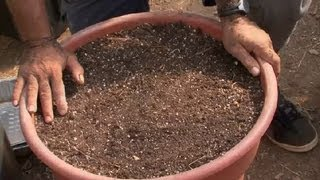How To Make Soil For A Raised-bed Vegetable Garden : Raised-bed Gardens
