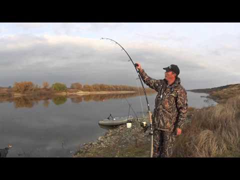 рыбалка сигнализаторы поклевки видео обзор