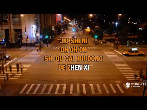 Ai De Jiu Shi Ni in the style of Leehom Wang | Karaoke with Lyrics
