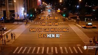 Gambar cover Ai De Jiu Shi Ni : Leehom Wang | Karaoke with Lyrics