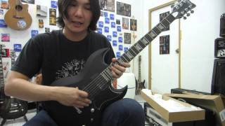 Schecter S II Platinum Guitar Drive Sound