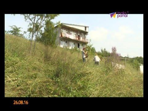 250 многодетных семей Сочи бесплатно получили земельные участки